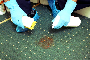 Carpet cleaning Kent DA