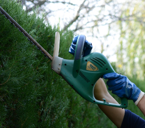 Gardening services in West London W