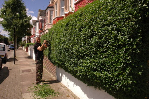 Gardening services in Tower Hamlets E