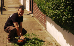 Gardening services in Islington N